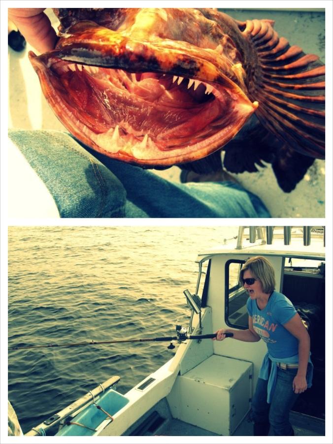 fish2_fotor